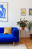 Royal-blue sofa and houseplant on side table in living room