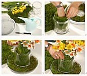 Instructions for arranging narcissus in vase and bowl decorated with moss