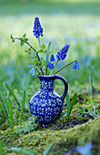 Grape hyacinths, squill and golden currant leaves in blue jug