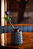 Blue anemone in structured vase on wooden table