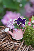 Mini-bouquet of lilac blossoms and petunias in a decorative watering can