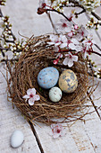 Eggs and cherry plum blossom in Easter nest