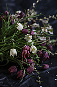 Snake's head fritillaries on dark surface