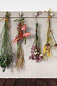 Sträuße mit getrockneten Blumen und Gräsern an einer Hakenleiste