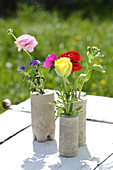 Ranunculus, floss flower and anemones in handmade concrete vases