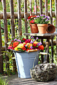 Late-summer arrangement of flower wreath and potatoes in garden