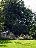 Greenhouse and herbaceous borders in front of tall trees