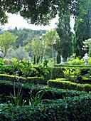 Beds edges with hedges in Mediterranean garden