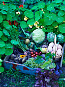Tray of harvested fruit, vegetables and eggs next to nasturtiums