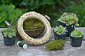 materials to make a wreath from houseleeks