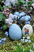 Easter eggs on bed of moss next to apple blossom