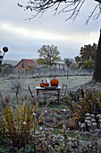 Late autumn in rustic garden: table and chairs with demijohns on table