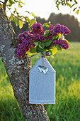 Posy of lilac in zinc bottle with heart-shaped pendants hung in tree