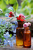 Quince blossom and peach blossom in brown glass bottles next to forget-me-nots