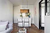 Open-plan kitchen in small, elegant, two-room apartment