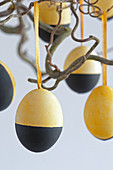 Yellow and black Easter eggs
