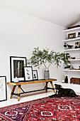 Rustikale Holzbank mit gerahmten Fotos und Grünpflanze, davor Hund auf Teppich