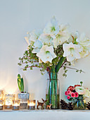 Festive arrangement of vase of white amaryllis and tealights on ledge