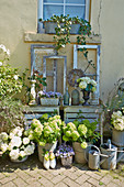 Vintage-style accessories, old window frames and hydrangeas outside house