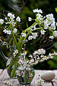 Posies of blackthorn blossom and Star-of-Bethlehem