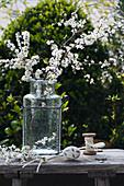 Vase of blackthorn blossom