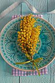 Kleiner Strauß aus Mimosen