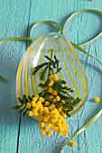 Blühender Mimosenzweig in Glasschale