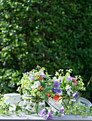 Bouquets of sweet peas and lady's mantle in mason jars