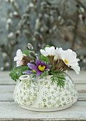 Posy of primulas and pasque flowers in teapot