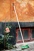 Pink rose next to broom leaning against ochre façade with black base