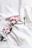 Posies of pink carnations tied with ribbons