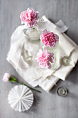 Pink carnations in glass bottles on folded fabric