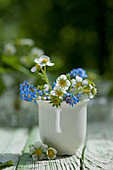 Wild strawberry flowers and forget-me-nots in mug