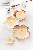 Handmade tealights in scallop shells