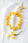 Dried narcissus flowers laid out in a wreath