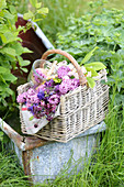 Basket of lilacs, aquilegia and branches of chestnut leaves