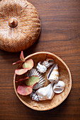 Herbstlicher Eukalyptuszweig und Muscheln in einem Körbchen