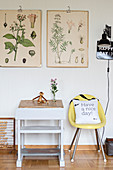 Botanical illustrations above old school desk and yellow chair