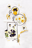 Dried and pressed violas, pansies and mimosa flowers in wire frames