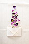 Hornveilchen-Blüten mit Briefumschlag