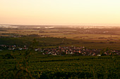 Countryside in wine-growing region around Colmar in Alsace (France)