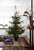Christmas tree and cushions on layered ethnic-style rugs