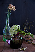 Unusual arrangement of bishop's flower and clematis on beetroot and carnation in glass bottle