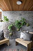 Plants planted in moss balls suspended in front of brick wall on terrace