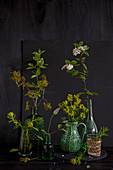 Flowering stems in vases (cypress spurge, oak twig, red dogwood, clematis)