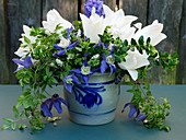 Blue and white spring bouquet with tulips and clematis