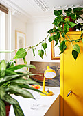Houseplant on top of yellow cupboard next to lamp on table