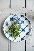 Forget-me-not lying on a plate
