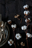 Stems of cotton bolls on black wooden surface