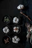 Cotton bolls and succulents arranged in tart cases